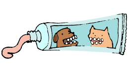Use only toothpaste intended for pets